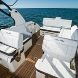 searay-250-sundeck-Aubo-kaufen