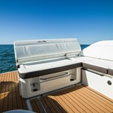 searay-sportboot-250-sdo-