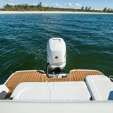 searay-250-sdo-sea-ray